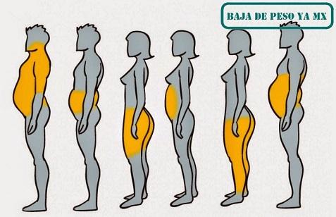 Qué tipo de cuerpo tengo y cómo eliminar la grasa acumulada